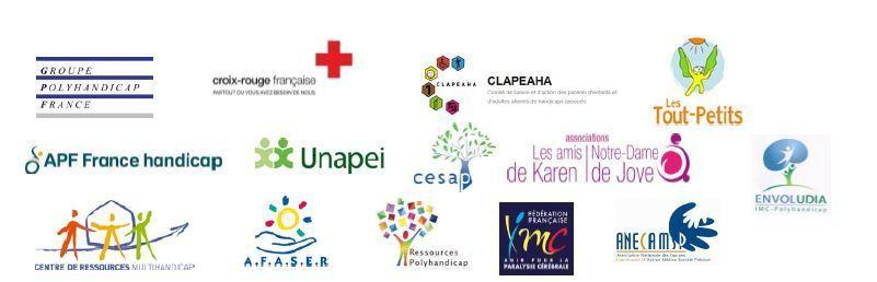 Société Inclusive Et Polyhandicap: Les Positions du Collectif Polyhandicap : Respecter La Spécificité Du Polyhndicap
